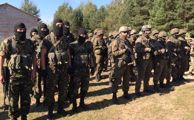 RFI: Exercices militaires de l'OTAN enUkraine