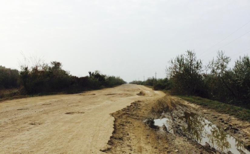 RFI: Le projet de tous les nids depoule