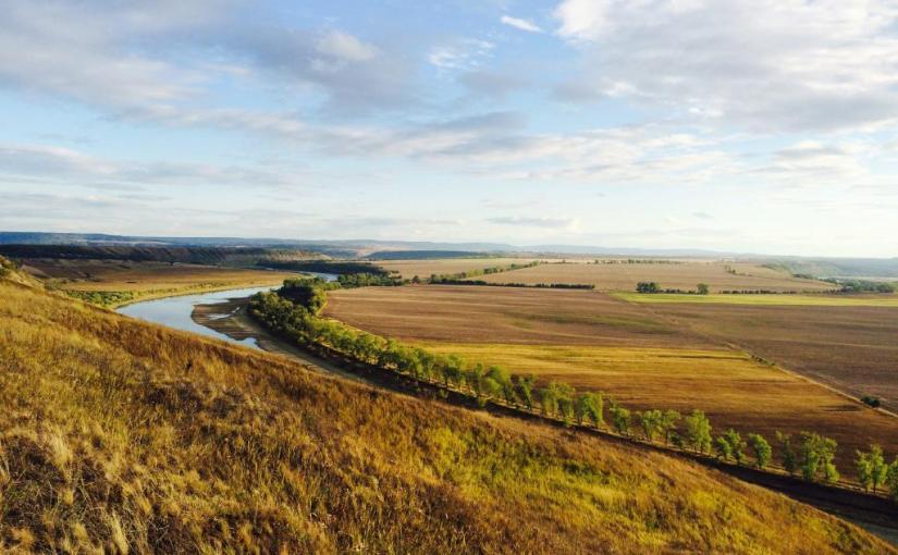 La France Agricole: Vers une libéralisation du marché de laterre